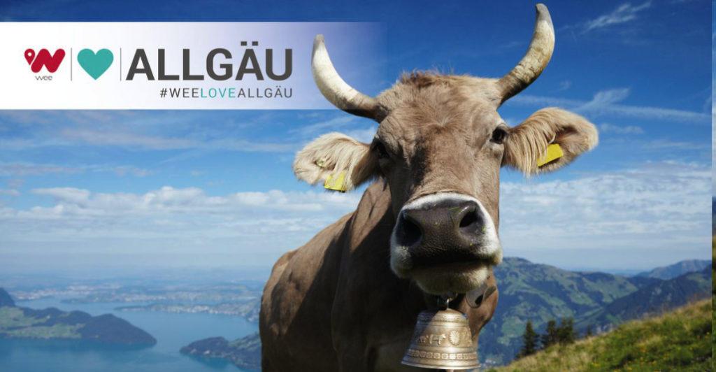 wee Love Allgau paysage avec vache